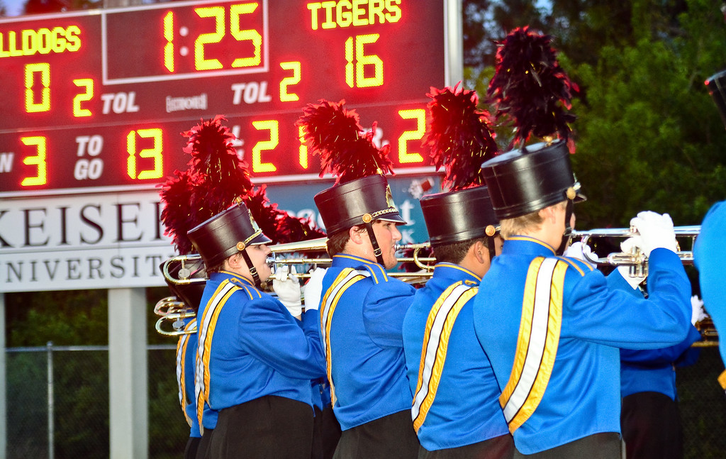 MCHS Tiger Regiment