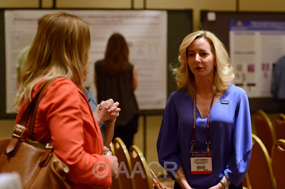 AACR Annual Meeting 2013 Pancreatic Cancer Action Network-AACR Sessions