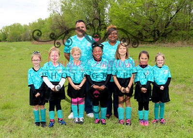 AYSO Teams 2015