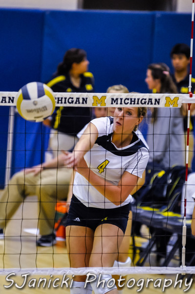 Michigan Volleyball 2012
