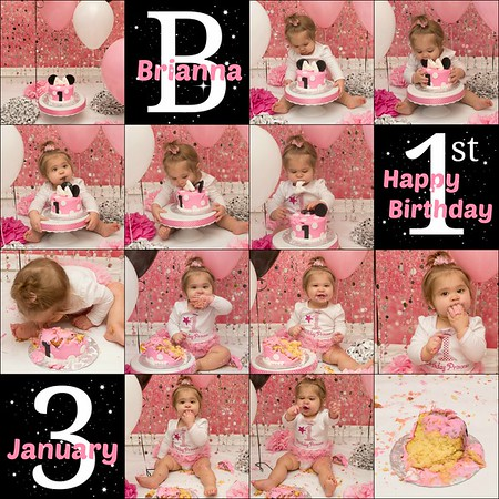 Brianna's 1st Birthday Session