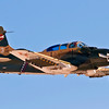 An A-1 Skyraider flying. Photographed at Aviation Nation 2009, Nellis Air Force Base, Las Vegas, Nevada, USA.
