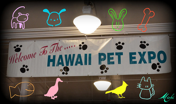 Hawaii Pet Expo