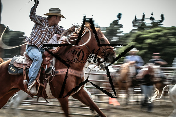 Doyle Hoskins Memorial Roping