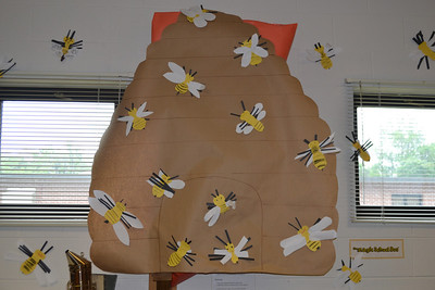 May Howard School Unveils Observation Bee Hive from the Bee Cause Project
