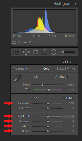 Lightroom Histogram - Editing Panel