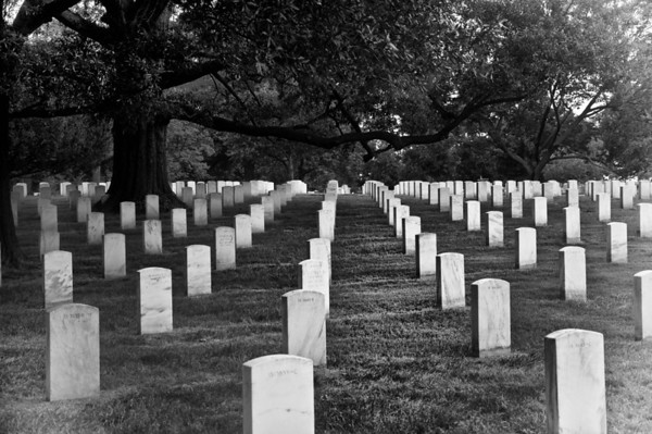 National Cemetary - Arlington