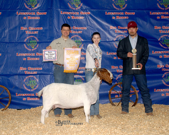 2012 RGV Live Stock Show Winners Circle (Barker Photography)