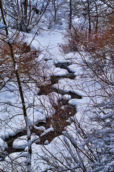 """""""S"""" alphabet challenge<br /> I think there is at least one """"S""""....Boulder Canyon during a blizzard."""