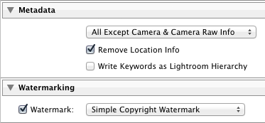 Lightroom 4 export metadata options