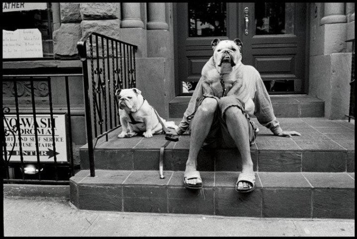 Famous Street Photographers - ? Elliott Erwitt / USA, 2000, New York City