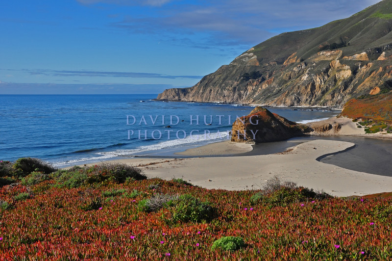 Colorful Coastline View - Highway 1