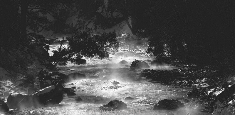 Yellowstone in Black & White
