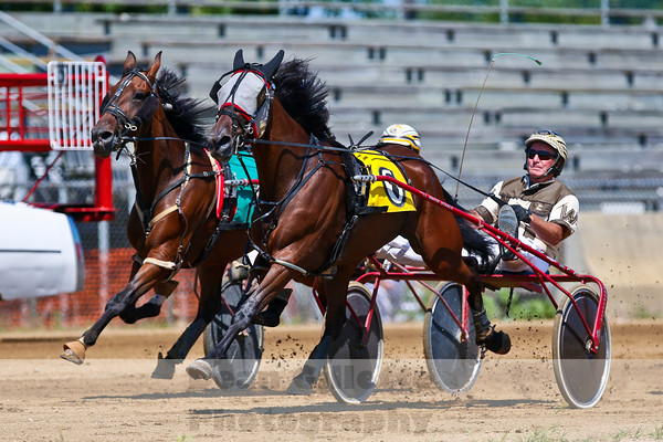 Horse Racing and Horse Events