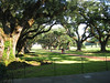 Oak Walk, Oak Alley Plantation, Vacherie, Louisiana