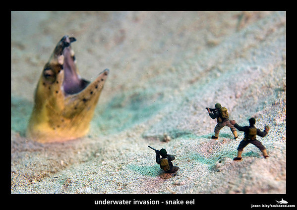 Underwater miniatures with snake eel by Scubazoo