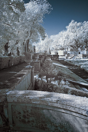Vizcaya in Infrared