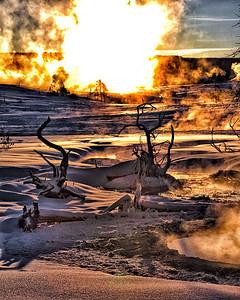 Yellowstone winter 2