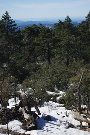 Laguna Mountains 12/26/11