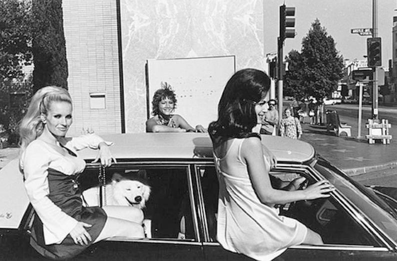 Famous Street Photographers - Lee Friedlander (1934 - )