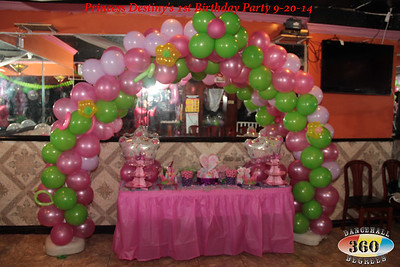 Princess Destiny's 1st Birthday Party 9-20-14