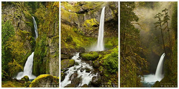 Green mossy waterfall collection by Varina Patel