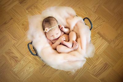 Quinn Newborn