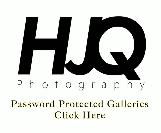 Parties - Password Protective Galleries