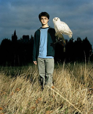 Daniel Radcliffe plays Harry Potter with owl Hedwig outside Hogwart's School of Witchcraft and Wizardry in the film , the third film in the series. ca. 2004