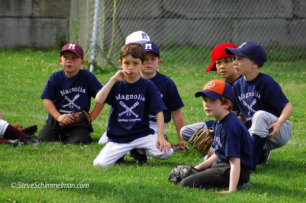 July 20 2011 Summer Little League
