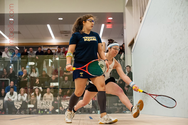 2014 College Squash Association Individual Championships