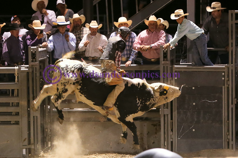 2014 07 26 BLUFFDALE CITY RODEO
