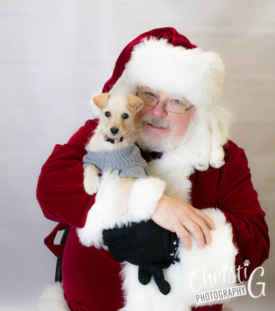 Three Rivers Humane Society Santa Paws 2013