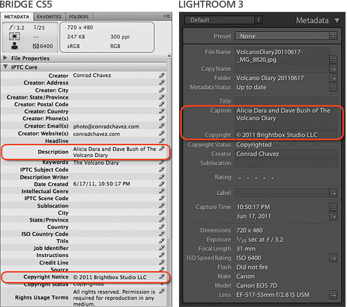 Metadata panels in Bridge CS5 and Lightroom 3