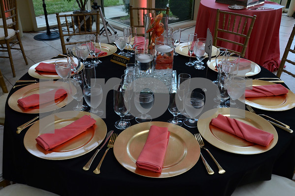 Mcintyre Wedding 2013