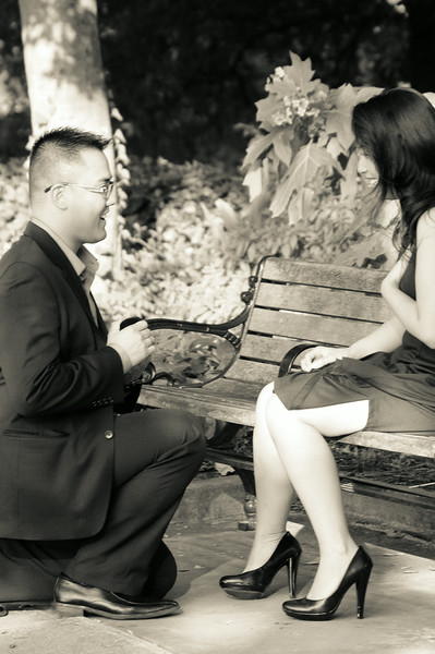 Jason and Le Luong proposal, Atlanta