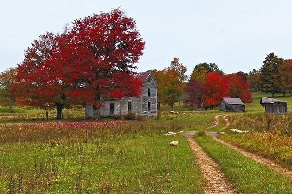 A Fall Trip Along Virginia Highway 8