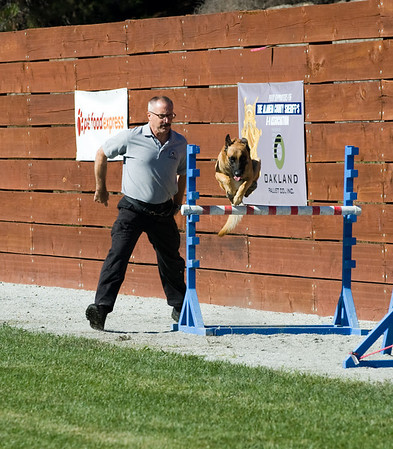 Sheriff K9 Trials