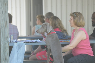 Susquehanna Valley Kennel Club Match Competition 6-8-14
