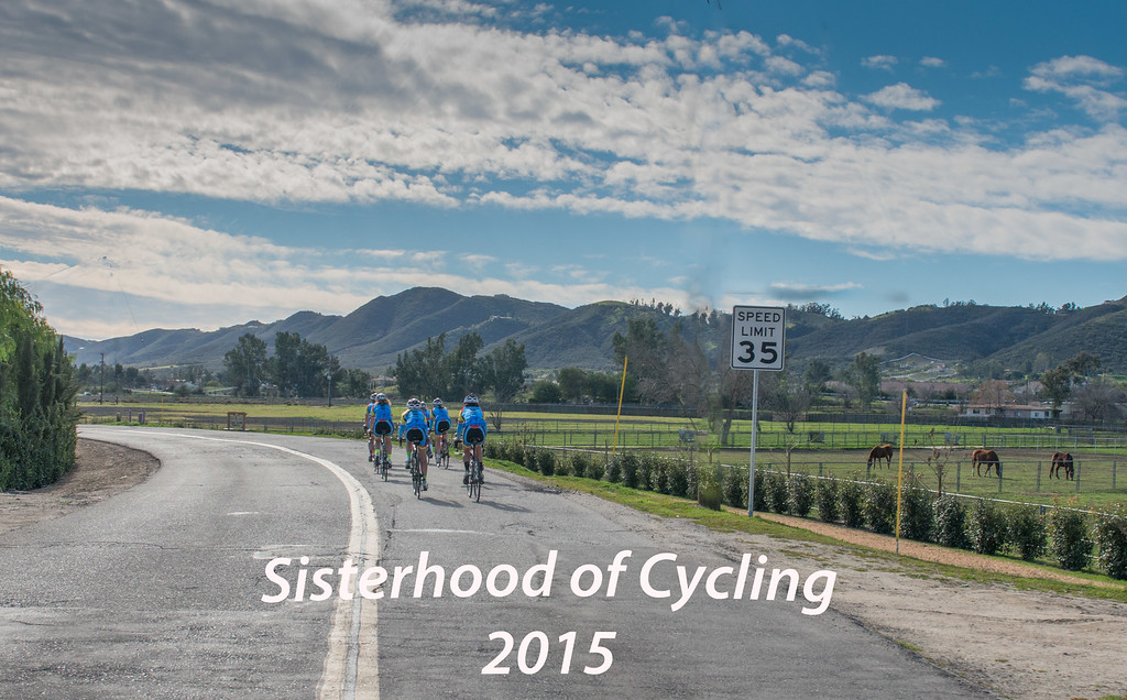 Sisterhood of Cycling