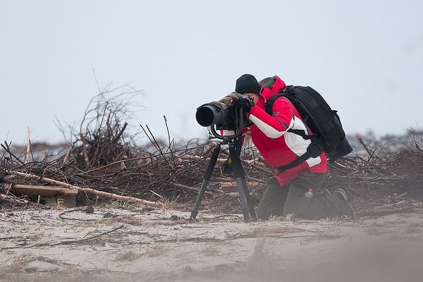Im Sandsturm auf der Helgoländer Düne