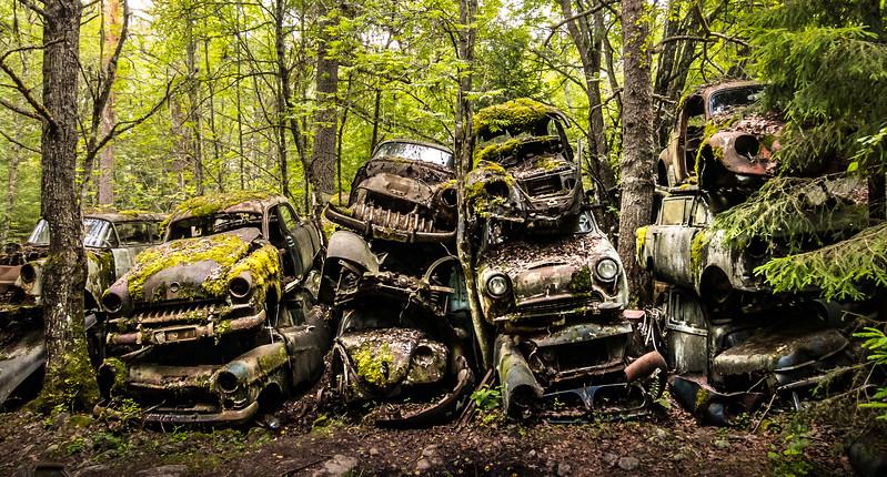 Fotografia vrakov, ktorú som urobil v hustom švédskom lese, zabodovala na súťaži Slovak Press Photo. Porota jej udelila čestné uznanie v kategórii Životné prostredie.