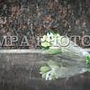 """Монгол улс, Улаанбаатар хот. 2013 оны 10 дугаар сарын 29.  Нийслэлийн ИТХ-ын Тэргүүлэгчдийн 2013 оны9-рсарын 4-ний өдрийн 103 дугаар тогтоолын дагуу Монголын орчин үеийн утга зохиолыг үндэслэгч Дашдоржийн Нацагдоржийн хөшөөг нүүлгэн шилжүүлж, Монгол-Туркийн цэцэрлэгт хүрээлэнд байрлууллаа. Хөшөөг шинэ байршилд нь  залах ёслолын ажиллагаанд нийслэлийн Удирдлагууд, Монголын утга, уран зохиолын салбарын төлөөлөл, ахмад уран бүтээлчид, иргэд оролцлоо. Үндэсний соёл амралтын хүрээлэнд байрлаж байсан уг хөшөөг уран барималын шилдэг шийдлийг тусгасан ховор бүтээлүүдийн нэг хэмээн үздэг ч байшин, барилгаар хүрээлэгдэн үзэгдэх орчин болон хамгаалалт нь алдагдсан байсан юм. Ёслолын ажиллагааны үеэр нийслэлийн Засаг дарга """"Өнөөдөр бид Монголын соёлыг үндэслэгч, Их зохиолч Д.Нацагдоржийн хөшөөг МУБИС, оюутан, багш нар, Оюутны хотхонтой ойртуулж, нийслэлийнхээ хойморьт залж байна. Түүний Монголын утга зохиолын салбар, соён гэгээрүүлэх үйлсэд оруулсан хувь нэмрийг Монголын ард түмэн үеийн үед дуурсах учиртай билээ. Нэрт яруу найрагч Р.Чойном """"Д.Нацагдоржийн хөшөөний дэргэд"""" шүлгэндээ уг хөшөөний тухай харууслын сэтгэгдлээ шингээсэн байдаг. Өнөөдөр Их зохиолчийн хөшөө түүний хүсэж байсан шиг Нийслэлийнхээ хойморьт өнгө зүсээ сайжруулан, заларч байгааг нэрт яруу найрагч маань тэнгэрээс хараад нийслэлчүүд бидэнд талархаж байгаа болов уу гэж бодож байна. Энэ ажлыг хариуцан хийсэн Н.Нацагдорж даргатай нийслэлийн Ерөнхий төлөвлөгөөний газрын хамт олонд та бүхнийхээ өмнөөс талархал илэрхийлье.Харин Их зохиолчийн хөшөө байсан хуучин талбайг уран бүтээлчдийн талбай болгон тохижуулах гэж байгаа гэдгийг дуулгахад таатай байна"""" гэлээ. Ёслолын ажиллагаанд хүрэлцэн ирсэн уран бүтээлчдийг төлөөлж МУСГЗ, яруу найрагч, сэтгүүлч Ү.Хүрэлбаатар """"Өнөөдөр Монголын яруу найрагчдад маш сайхан үйл явдал тохиож байна. Бидний хайртай Их зохиолч Д.Нацагдоржийн маань хөшөө нийслэлийн хойморьт заларч байгаад туйлаас их талархаж байна. Анх хөшөөг хуучин сууринаас нь шилжүүлэхэд олон эргэлзээ төрж байснаа нууга"""