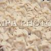 Монгол Улс, Улаанбаатар хот. 2014 оны 1 дүгээр сарын 21.  MPA PHOTO/ Ц.МЯГМАРСҮРЭН