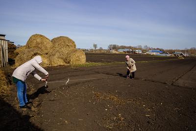 19.04.2021 - Аксу авылында кишер чәчүдән фоторепортаж (Фото Салават Камалетдинов )