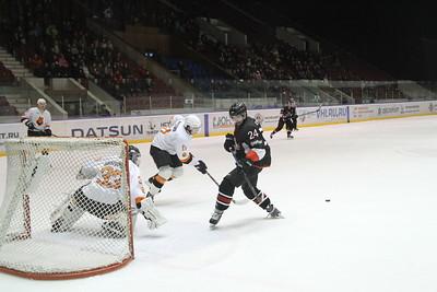 Челмет (Челябинск) - Молот-Прикамье (Пермь) 5:3. 15 января 2015