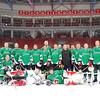 Ветераны хоккея с шайбой, фотографии