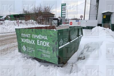 фото: Михаил Захаров