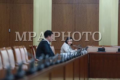 """2017 оны хоёрдугаар сарын 07. Улсын Их Хурлын Эдийн засгийн байнгын хорооны өнөөдрийн хуралдаан 14 цаг 50 минутад гишүүдийн 62.8 хувийн ирцтэйгээр эхэллээ. Хуралдааны эхэнд Байнгын хорооны дарга Д.Тэрбишдагва хэлэлцэх асуудлын дарааллыг танилцуулсан юм. Хуралдаанаар """"Монгол Улсын статистикийн салбарыг 2016-2020 онд хөгжүүлэх дунд хугацааны хөтөлбөр батлах тухай"""" Улсын Их Хурлын тогтоолын төсөл, Монгол Улсын Хөгжлийн банкны тухай хуулийн шинэчилсэн найруулгын төслийн эцсийн хэлэлцүүлэг, Монгол Улсын Хөгжлийн банкны тухай хуулийг дагаж мөрдөх журмын тухай хуулийн төсөл,Төв банк /Монголбанк/-ны тухай болон Төсвийн тухай хуульд өөрчлөлт оруулах тухай, Монгол Улсын Хөгжлийн банкны тухай хуулийг хүчингүй болсонд тооцох тухай хуулийн төслүүдийн анхны хэлэлцүүлэг, Монгол Улсын Засгийн газар, Дэлхийн банкны Олон улсын хөгжлийн ассоциаци хоорондын """"Санхүүжилтийн ерөнхий хөтөлбөр""""-ийн төсөл, Монгол Улсын Засгийн газар, Хөдөө аж ахуйг хөгжүүлэх олон улсын сангийн хооронд байгуулах """"Зах зээл ба бэлчээрийн удирдлагын төсөл""""-ийн Нэмэлт санхүүжилтийн хэлэлцээрийн төсөл, Төрөөс мөнгөний бодлогын талаар 2016 онд баримтлах үндсэн чиглэл батлах тухай Улсын Их Хурлын тогтоолын хэрэгжилт, 2017 оны мөнгөний бодлогыг хэрэгжүүлэх бэлтгэл ажлын явц байдлын талаархи Монголбанкны Ерөнхийлөгчийн мэдээлэл сонсохоор тогтсон юм.     Улсын Их Хурлын тогтоолын төслийг хэлэлцэв  Улсын Их Хурлын гишүүн Ц.Даваасүрэн нарын 27 гишүүн 2016 оны 12 дугаар сарын 28-ны өдөр өргөн мэдүүлсэн, """"Монгол Улсын статистикийн салбарыг 2016-2020 онд хөгжүүлэх дунд хугацааны хөтөлбөр батлах тухай"""" Улсын Их Хурлын тогтоолын төслийн үзэл баримтлалыг хэлэлцэх эсэхийг хэлэлцлээ. Тогтоолын төслийн талаар УИХ-ын гишүүн Ц.Даваасүрэн танилцуулсан юм.  Статистикийн салбарыг хөгжүүлэх дунд хугацааны хөтөлбөр нь статистикийн дунд хугацааны үйл ажиллагааны зорилтыг тодорхойлсон бөгөөд тус байгууллагын үйл ажиллагаа, үзүүлэлтүүдийг олон улсын стандартад нийцүүлэх, зорилго, зорилт хэрэгжүүлэх үйл ажиллагаагаа тодорхойлж, түүнд хүрэх """