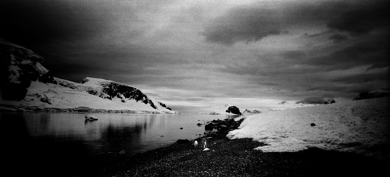 Антарктида №17